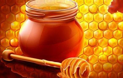滨海边疆区蜂蜜广告