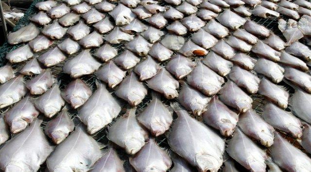 在符拉迪沃斯托克东方经济论坛将签订第一个交易所和拍卖行参与的鱼类输出条约