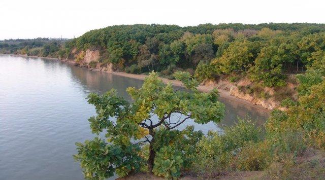 滨海边疆区科学家和地方当局联手解决兴凯湖的问题