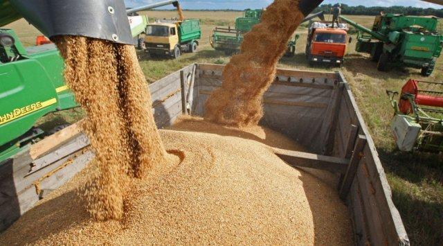 俄政府预计今年是近代以来粮食产量最好年份