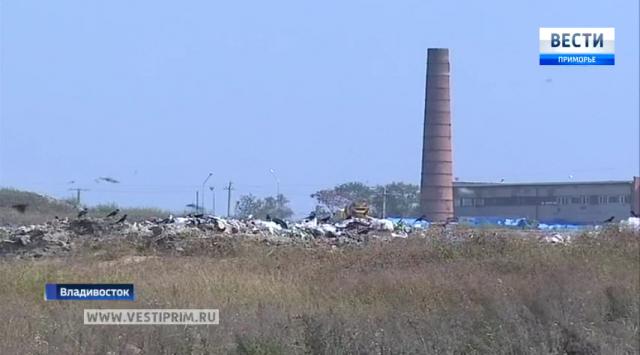 滨海边疆区政府实行收垃圾和利用废物相关的措施