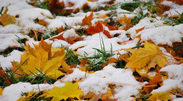 俄符拉迪沃斯托克100年来首次10月中旬降雪