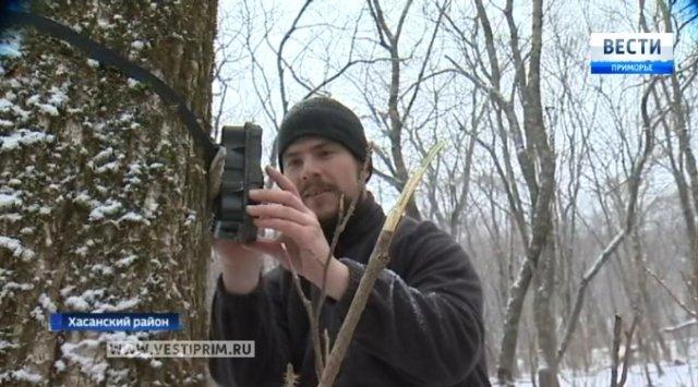 俄罗斯滨海边疆区国家公园窥探动物的秘密