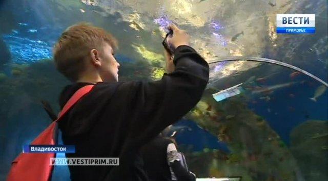 中俄高校首次联合开展海冰声学试验研究