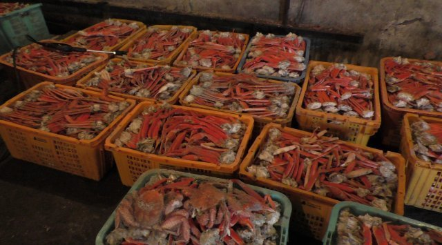 滨海边疆区渔民捕获的螃蟹超过2.3万吨