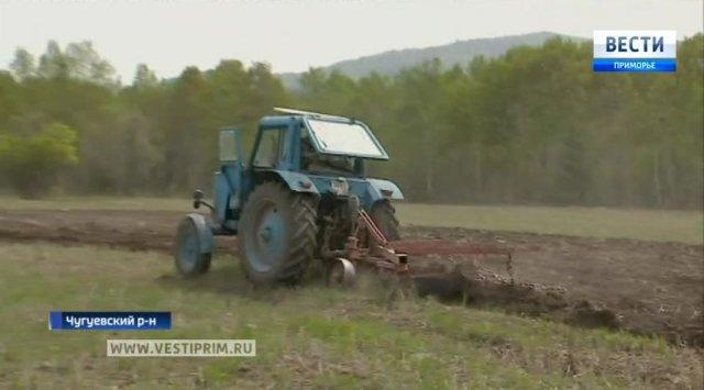 中国放弃美国大豆是俄远东地区发展农工产业的良机