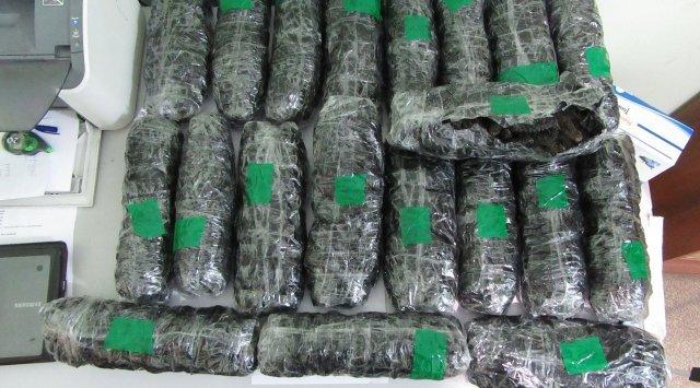 滨海边疆区的海关人员在公共汽车的客舱里发现了21公斤干海参
