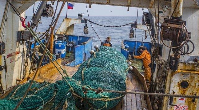 滨海边疆区市场上以合理的价格出售鱼